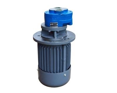直插式支架油泵电机组