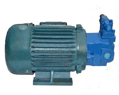 直插式油泵电机组